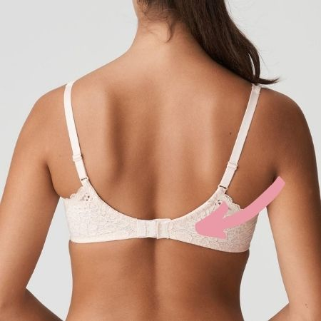 how back of bra should fit